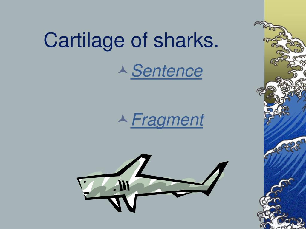 Cartilage of sharks.