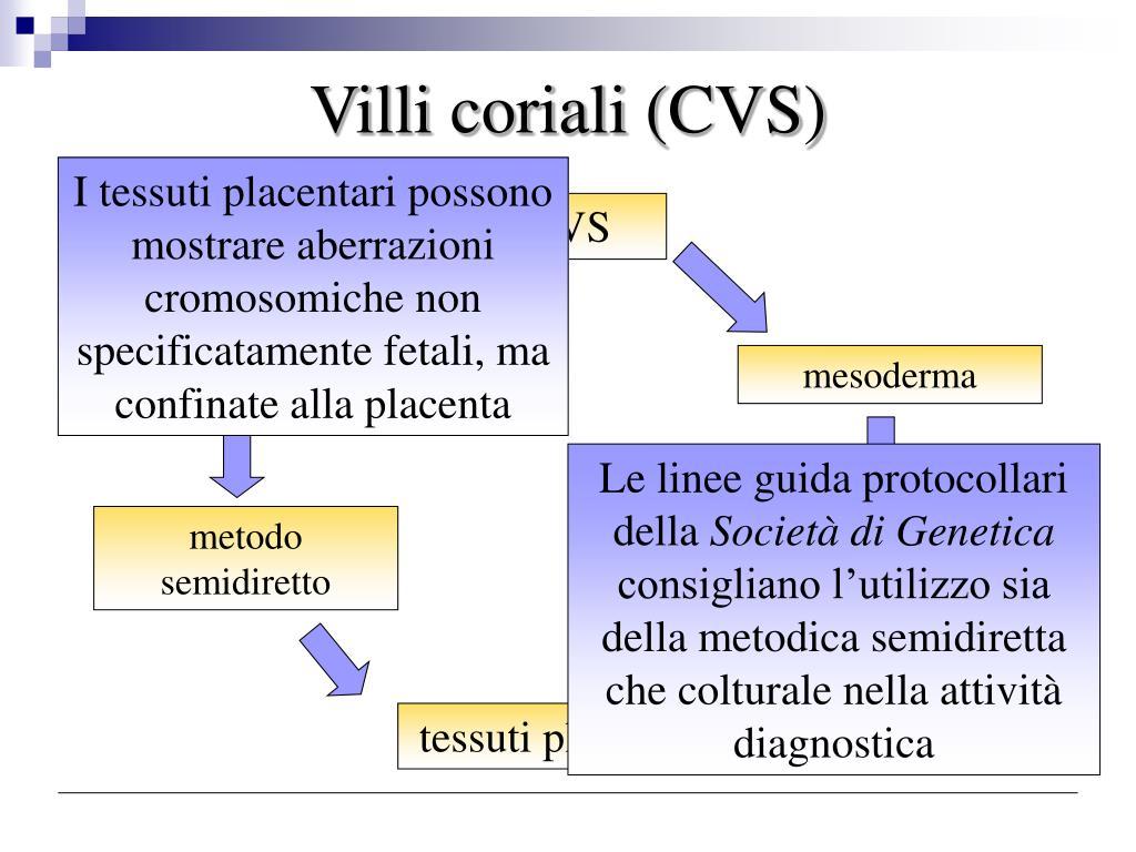 Villi coriali (CVS)