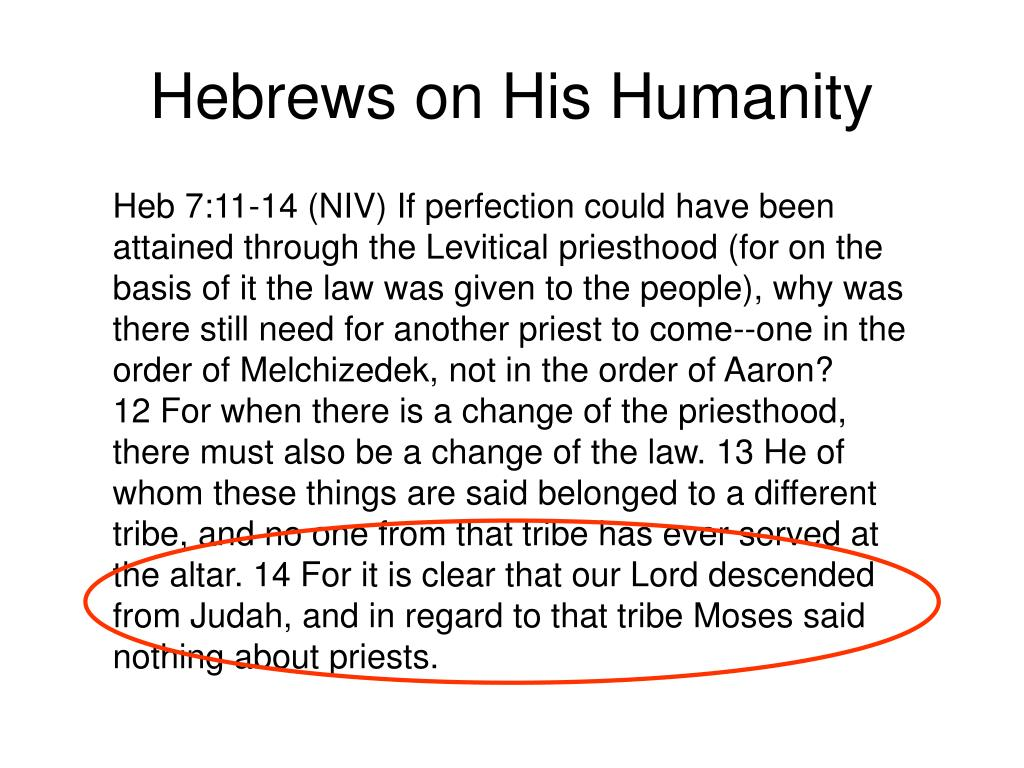 Hebrews on His Humanity