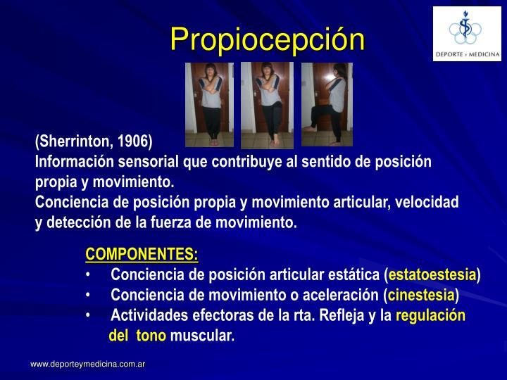 Propiocepción