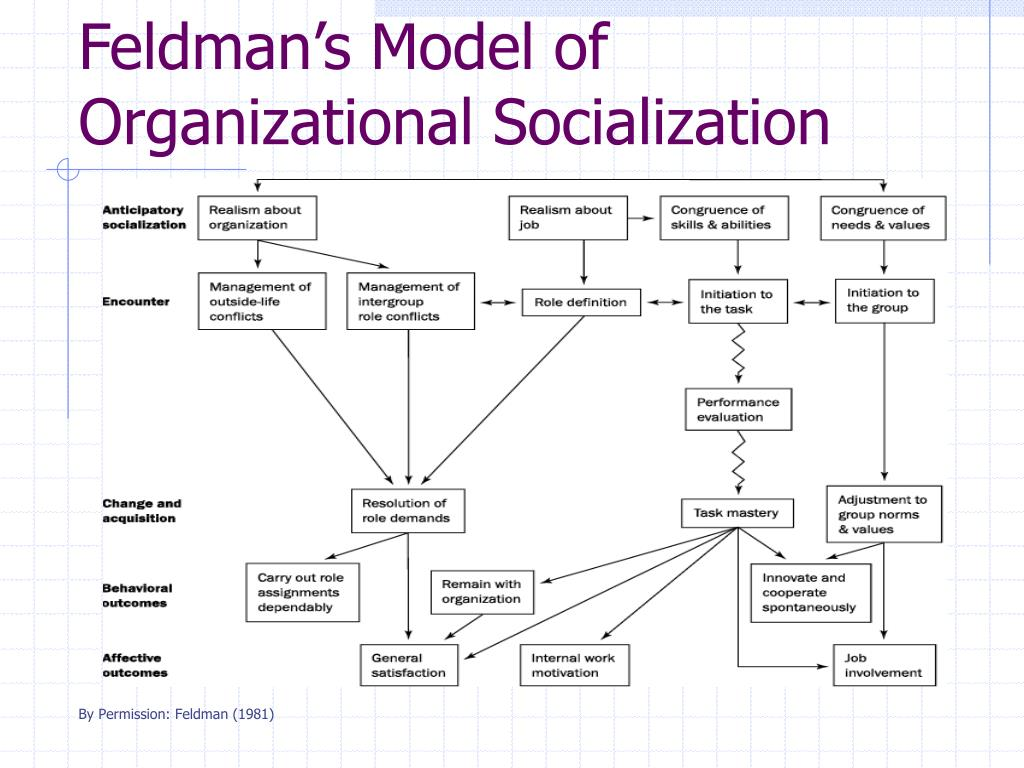 Feldman's Model of Organizational Socialization