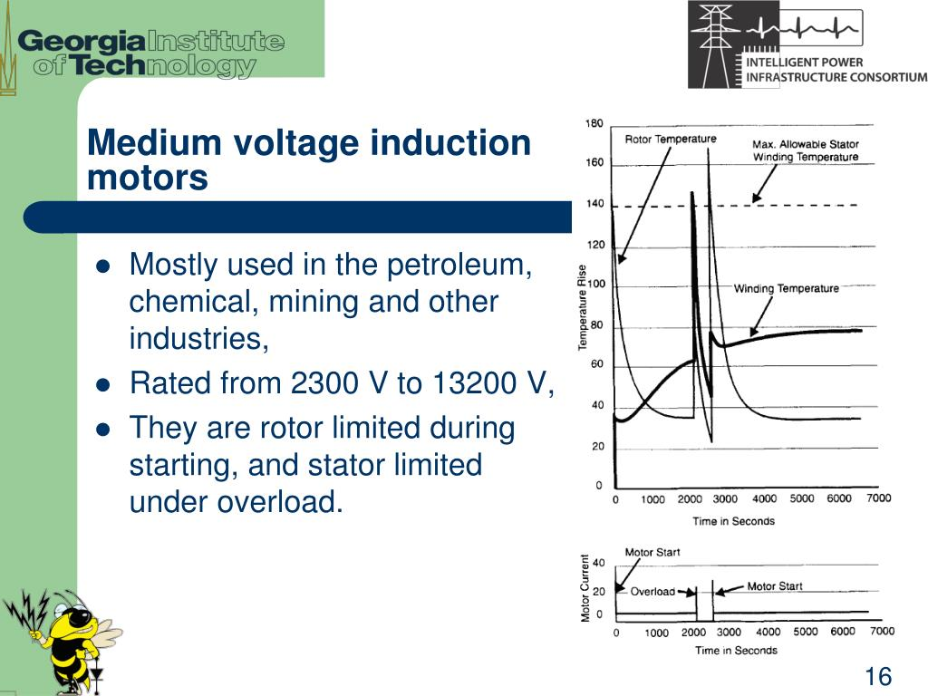 Medium voltage induction motors