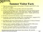 summer visitor facts