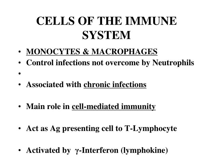 Cells of the immune system