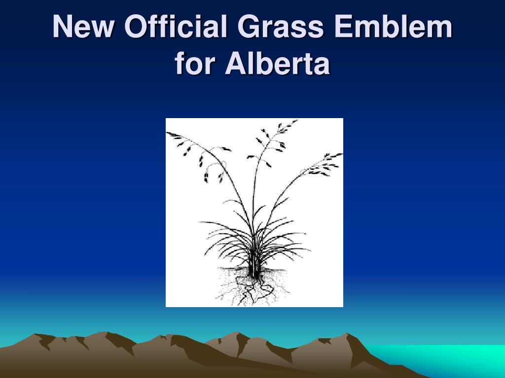 New Official Grass Emblem for Alberta
