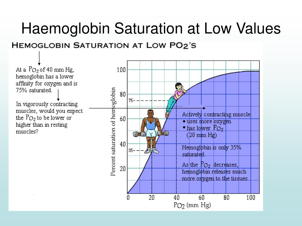 Haemoglobin Saturation at Low Values