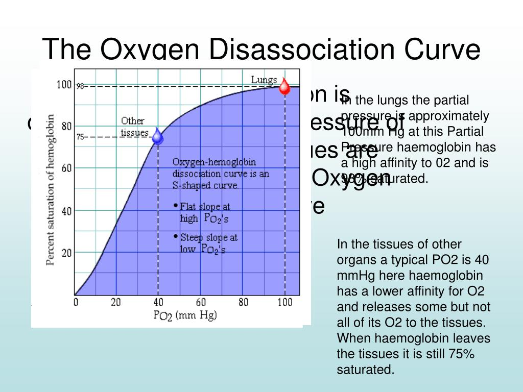 The Oxygen Disassociation Curve
