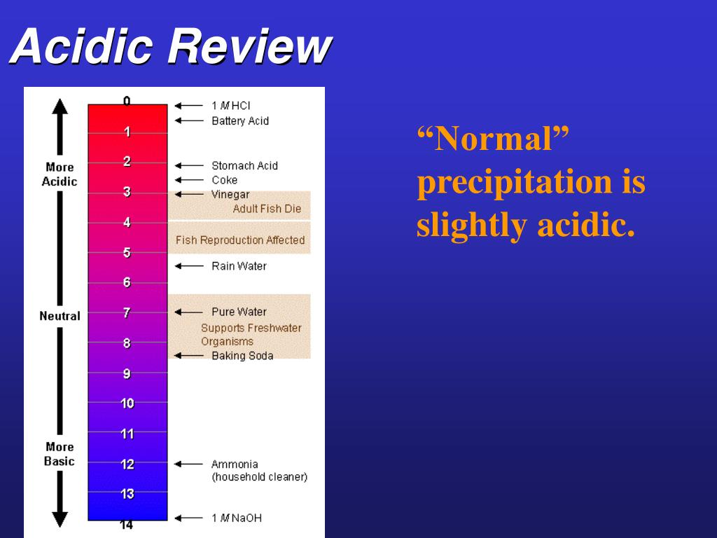 Acidic Review