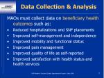 data collection analysis57
