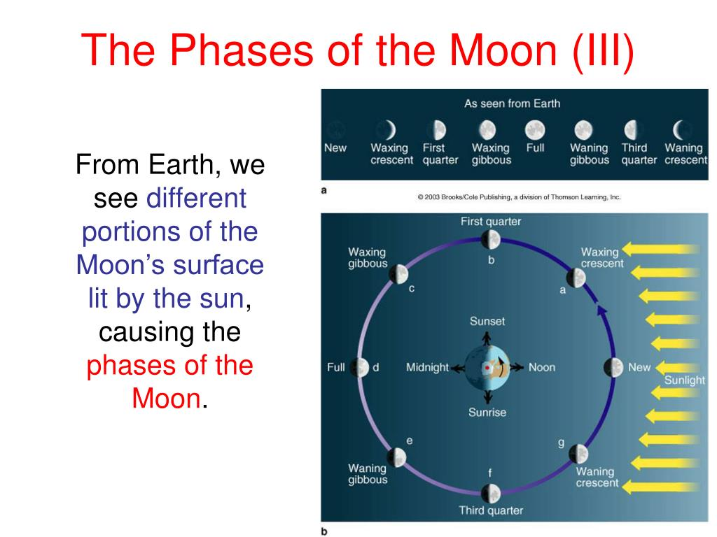 The Phases of the Moon (III)