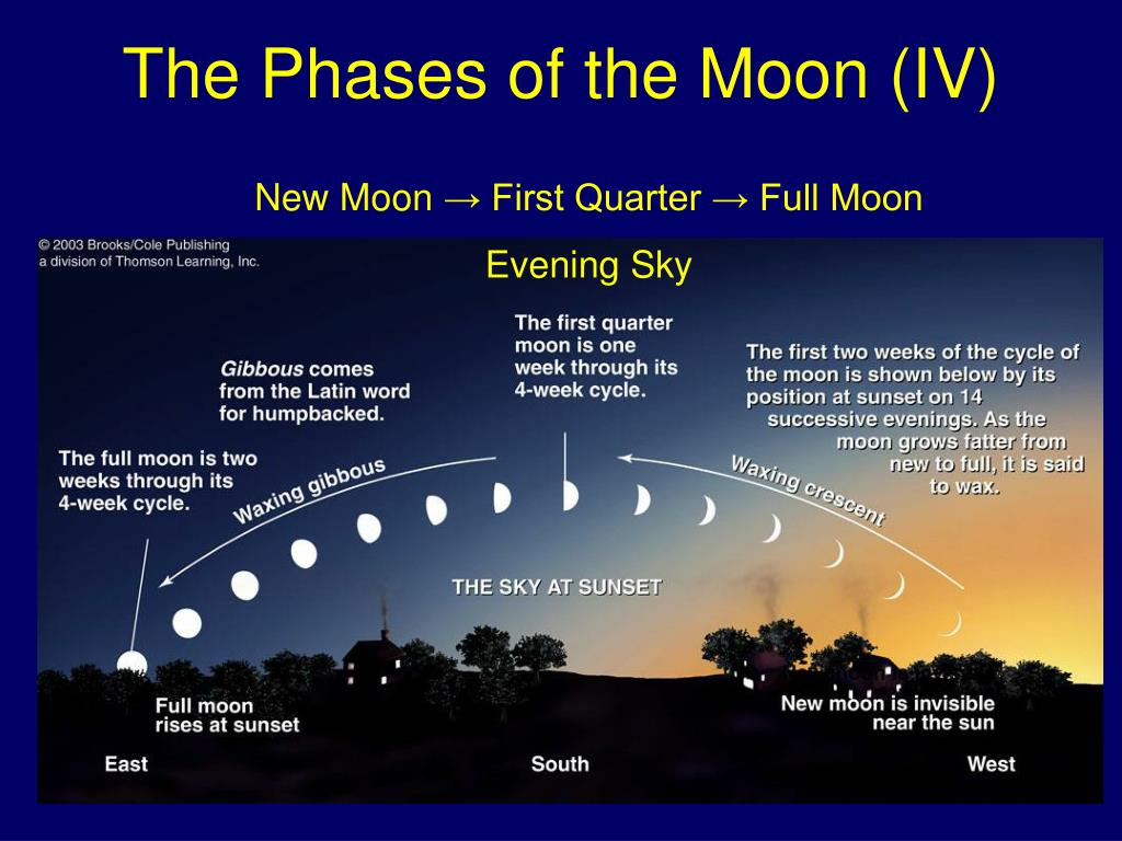 The Phases of the Moon (IV)