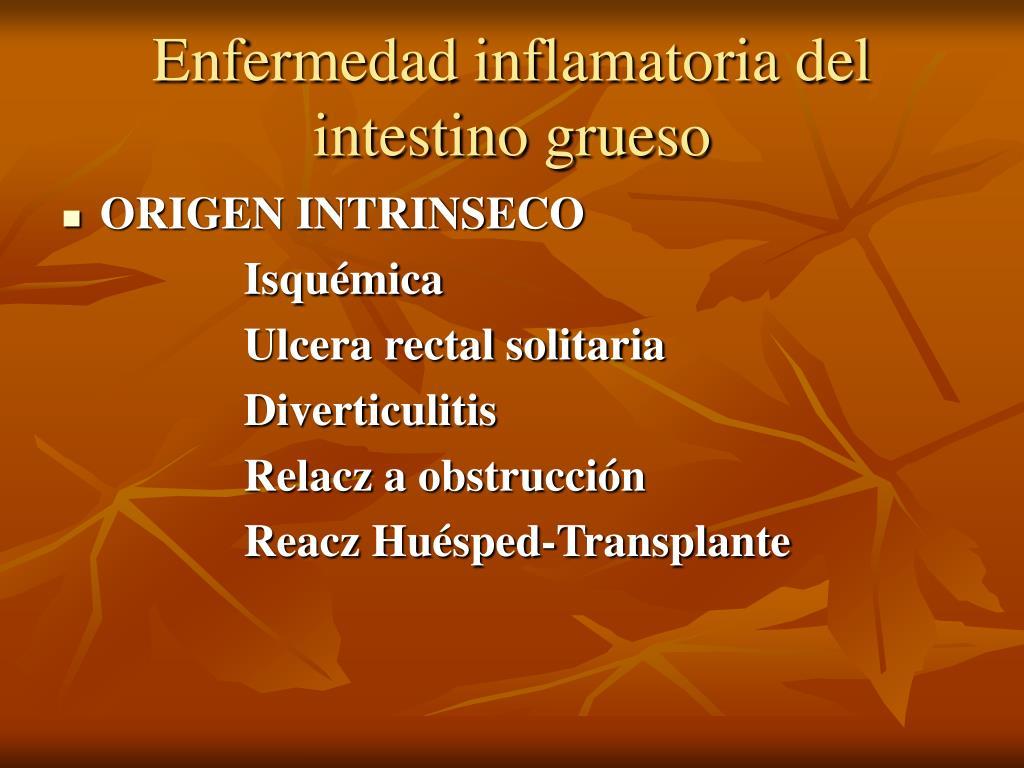 Enfermedad inflamatoria del intestino grueso