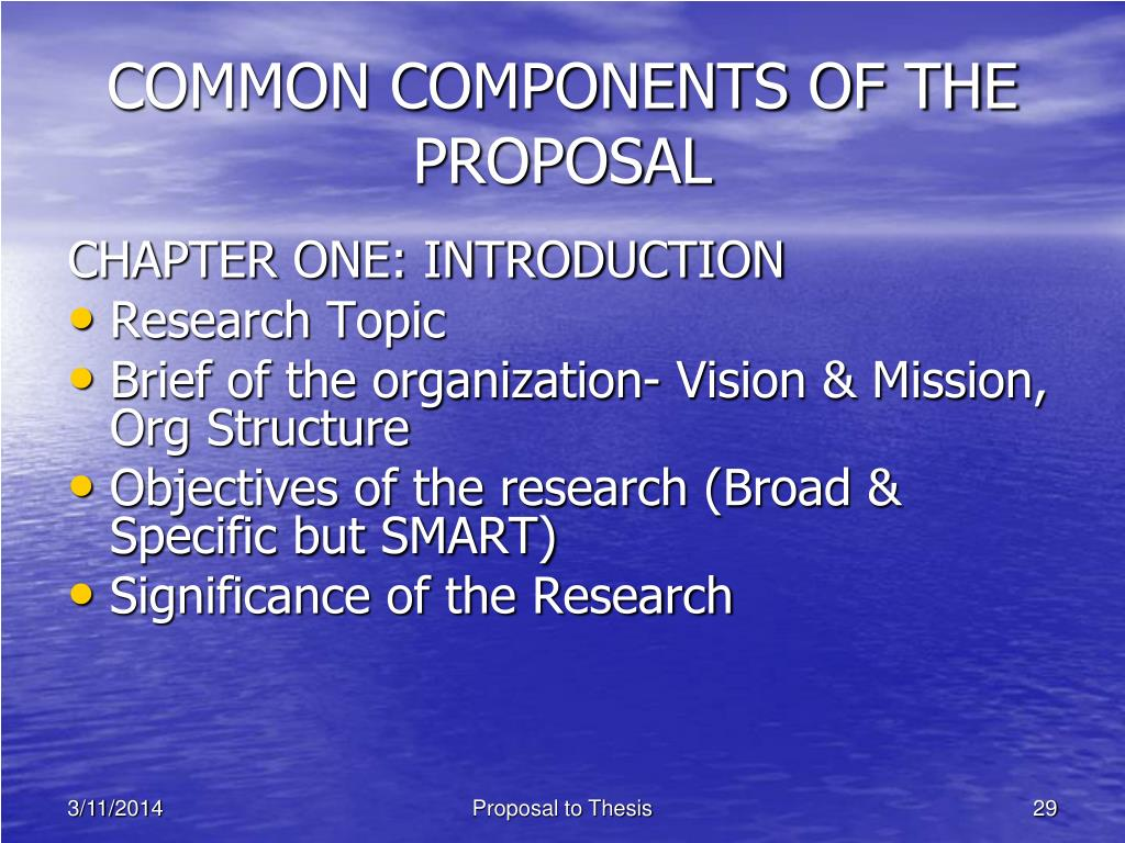 COMMON COMPONENTS OF THE PROPOSAL