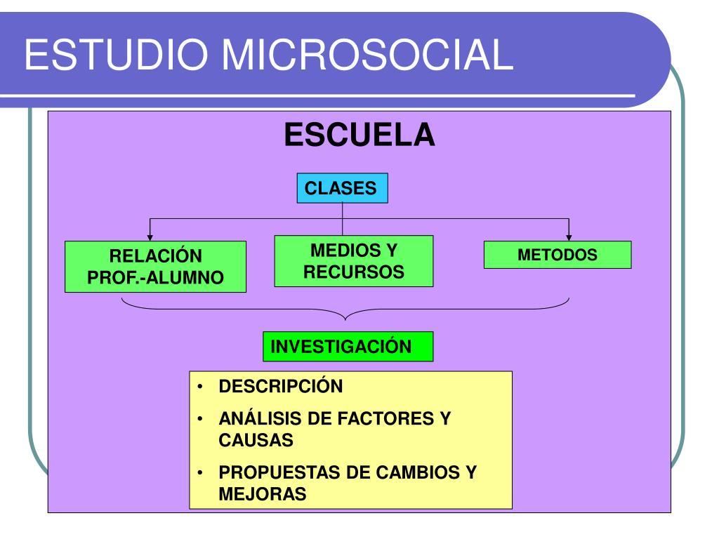 ESTUDIO MICROSOCIAL