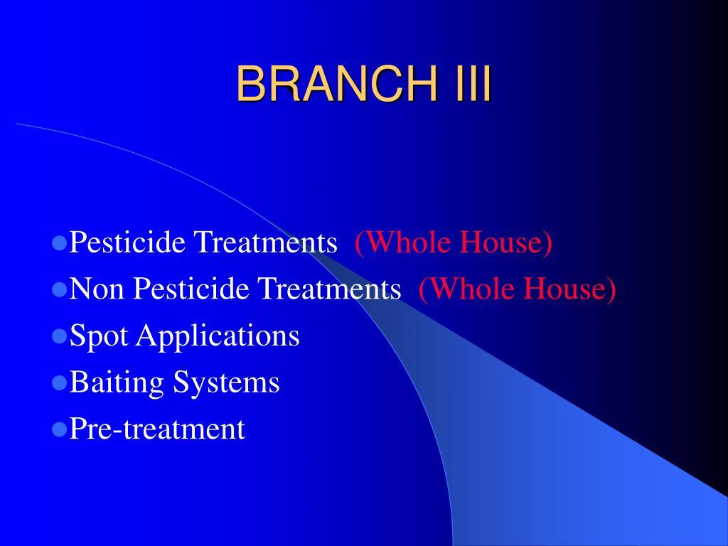 BRANCH III