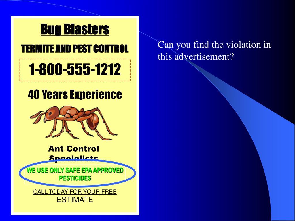 Bug Blasters