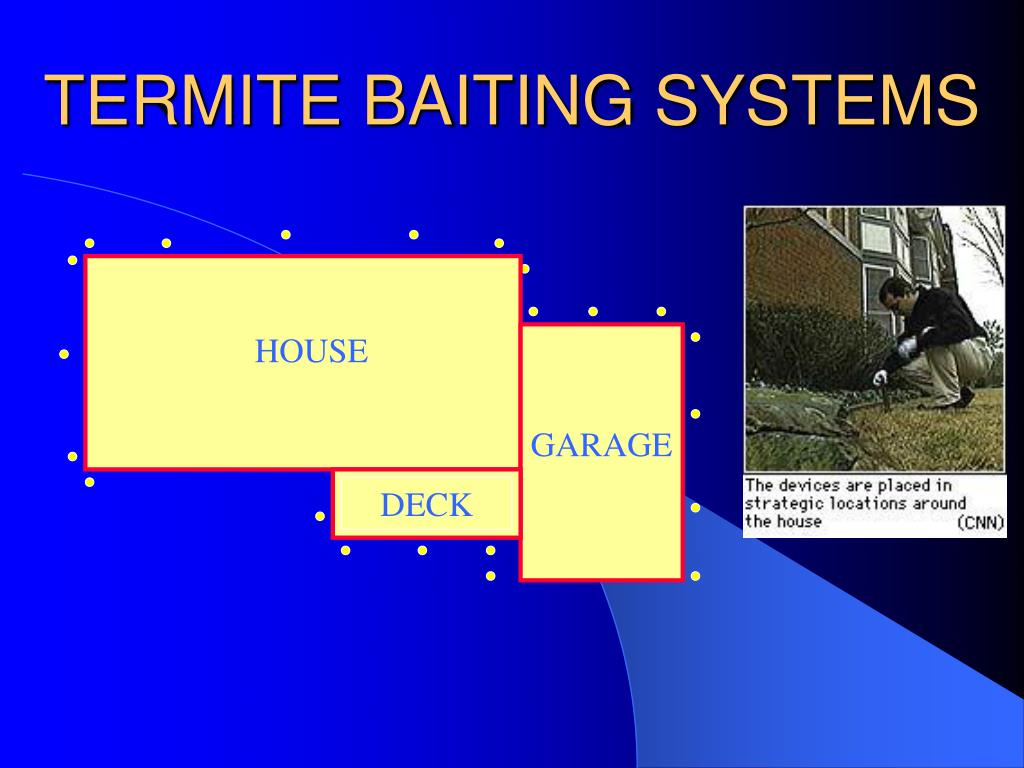TERMITE BAITING SYSTEMS
