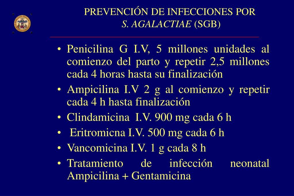 PREVENCIÓN DE INFECCIONES POR
