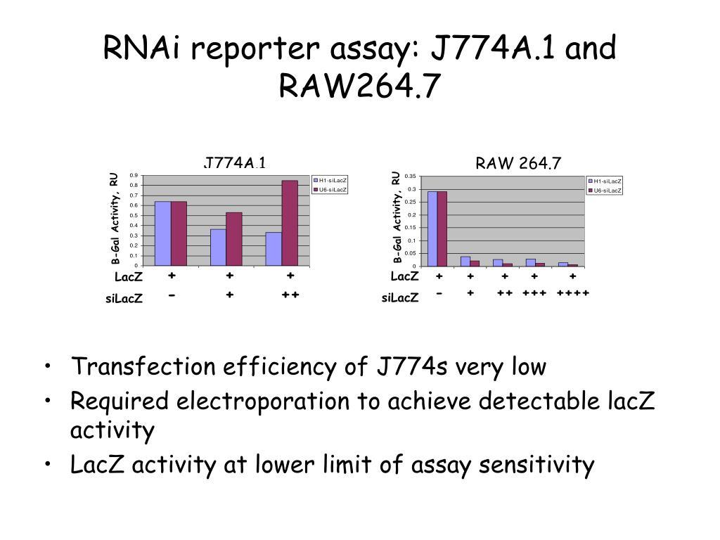 RAW 264.7