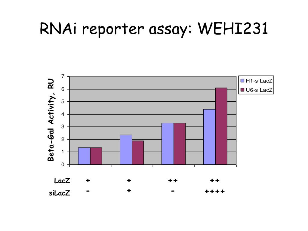 RNAi reporter assay: WEHI231