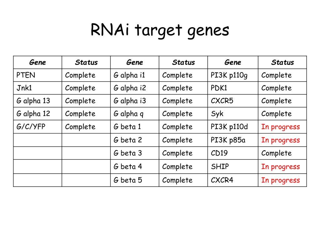 RNAi target genes