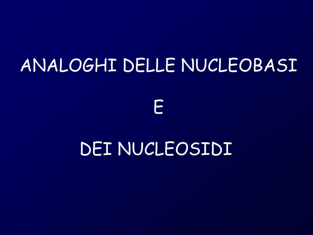 ANALOGHI DELLE NUCLEOBASI