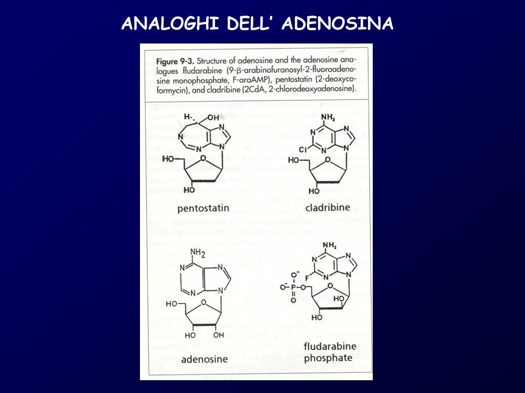 ANALOGHI DELL' ADENOSINA
