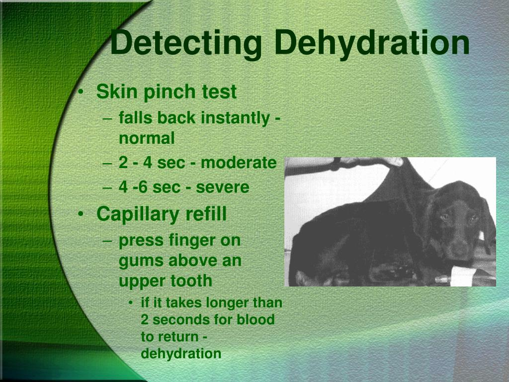 Detecting Dehydration