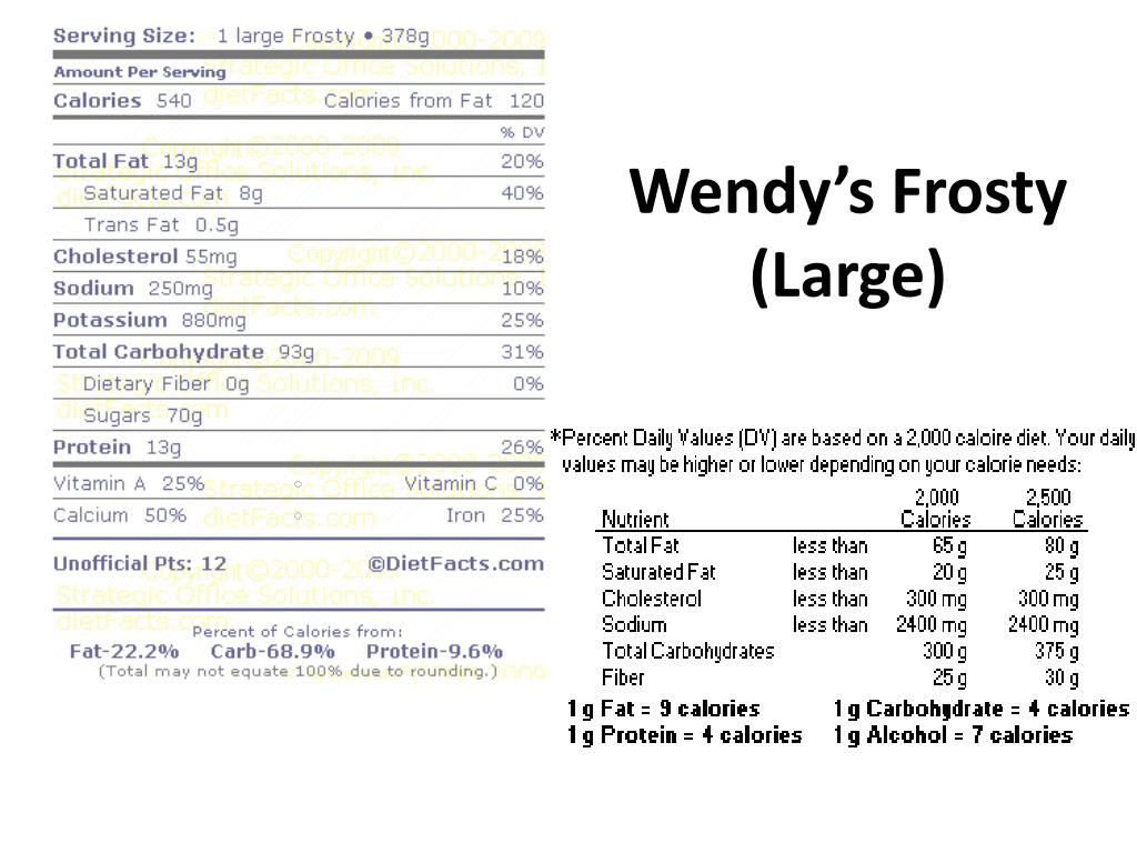 Wendy's Frosty (Large)
