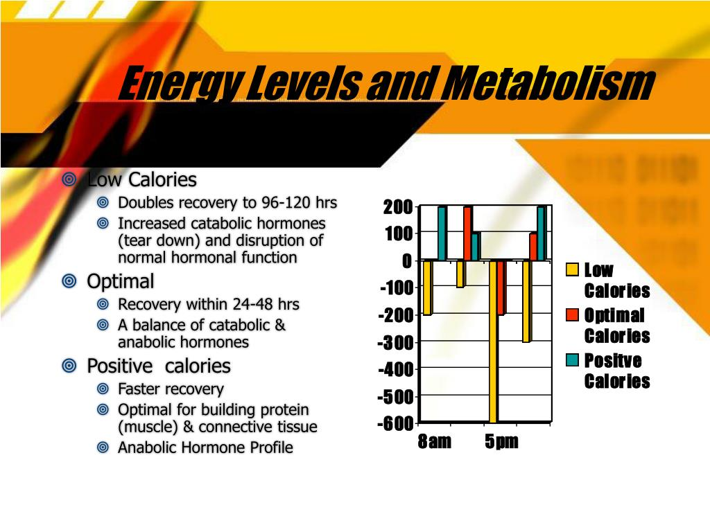 Energy Levels and Metabolism