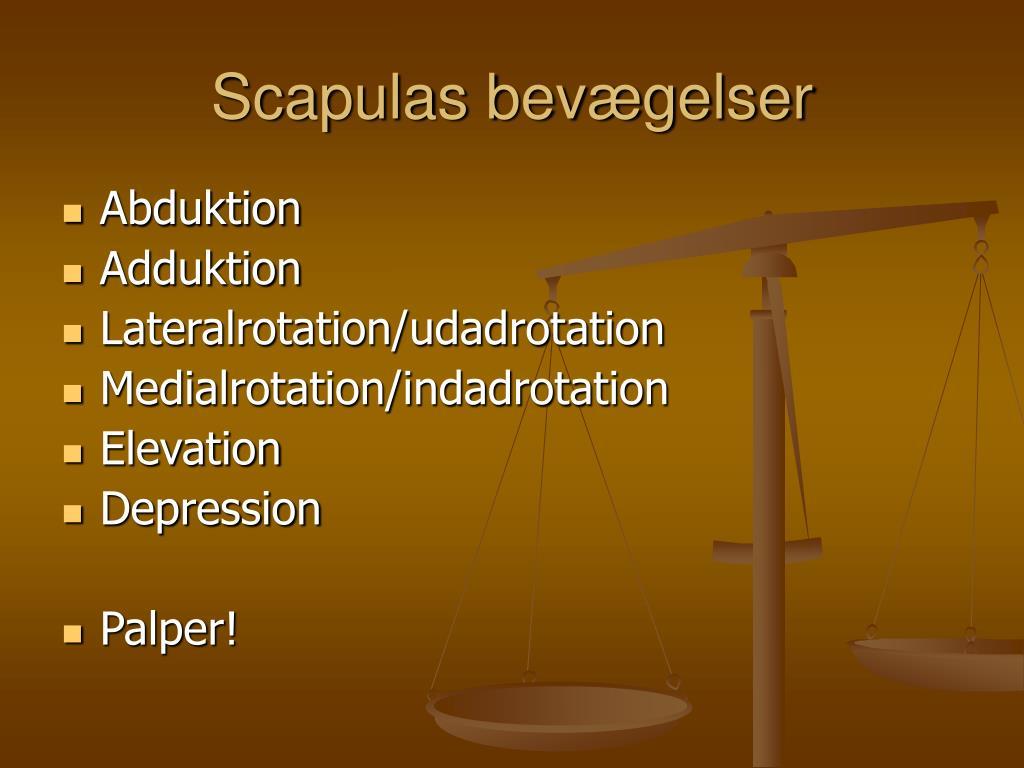 Scapulas bevægelser