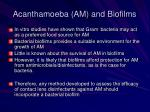 acanthamoeba am and biofilms