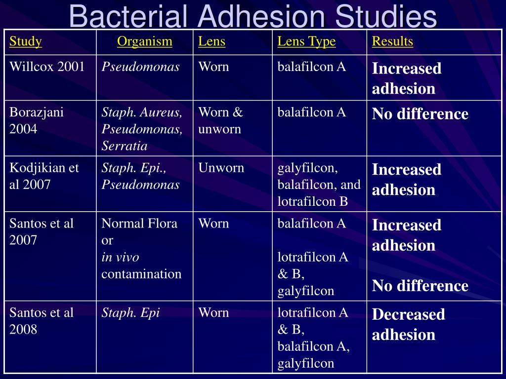 Bacterial Adhesion Studies