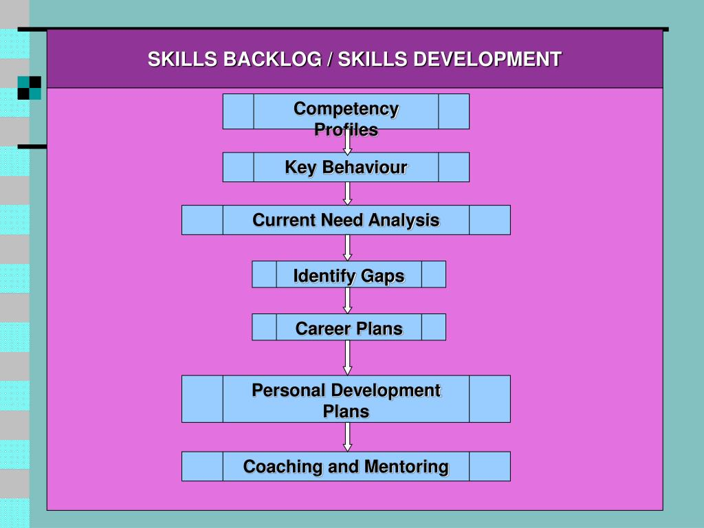 SKILLS BACKLOG / SKILLS DEVELOPMENT