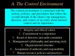 a the control environment