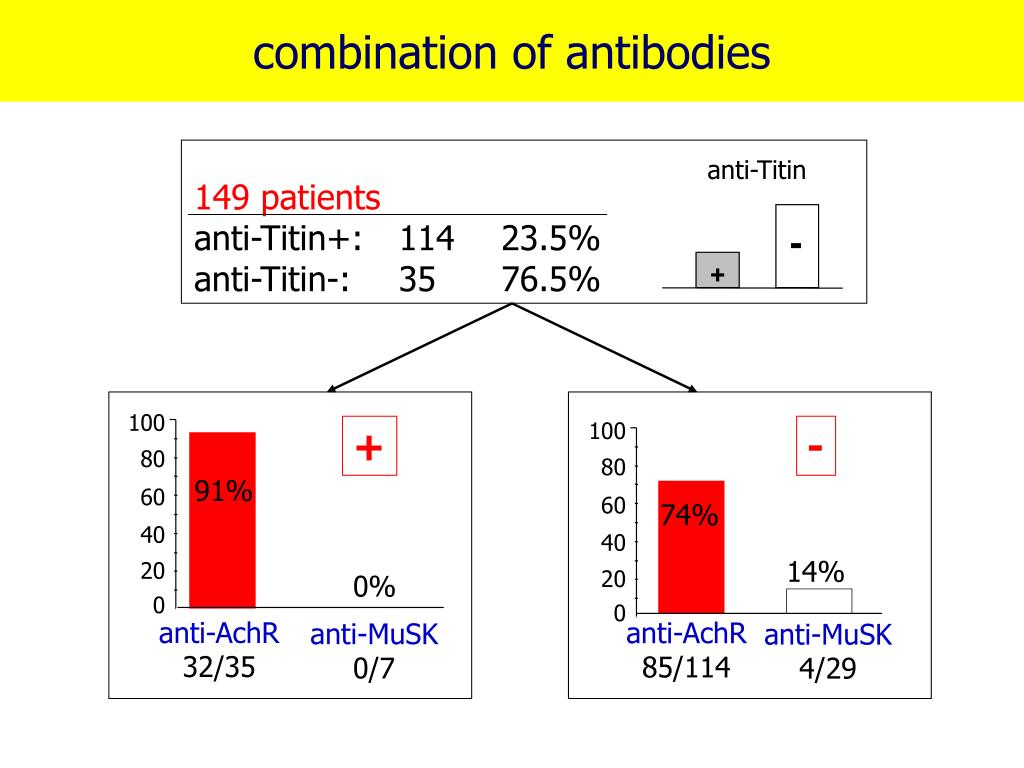 combination of antibodies
