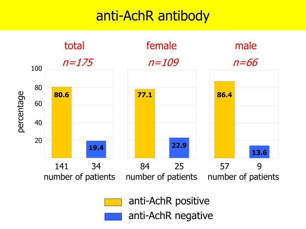 anti-AchR antibody