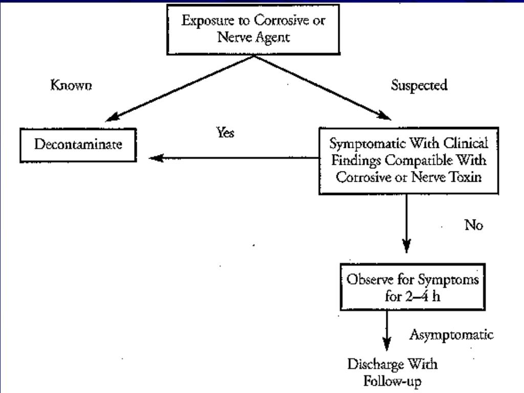 Joshua Rotenberg MD MMS, Pediatric Neurology