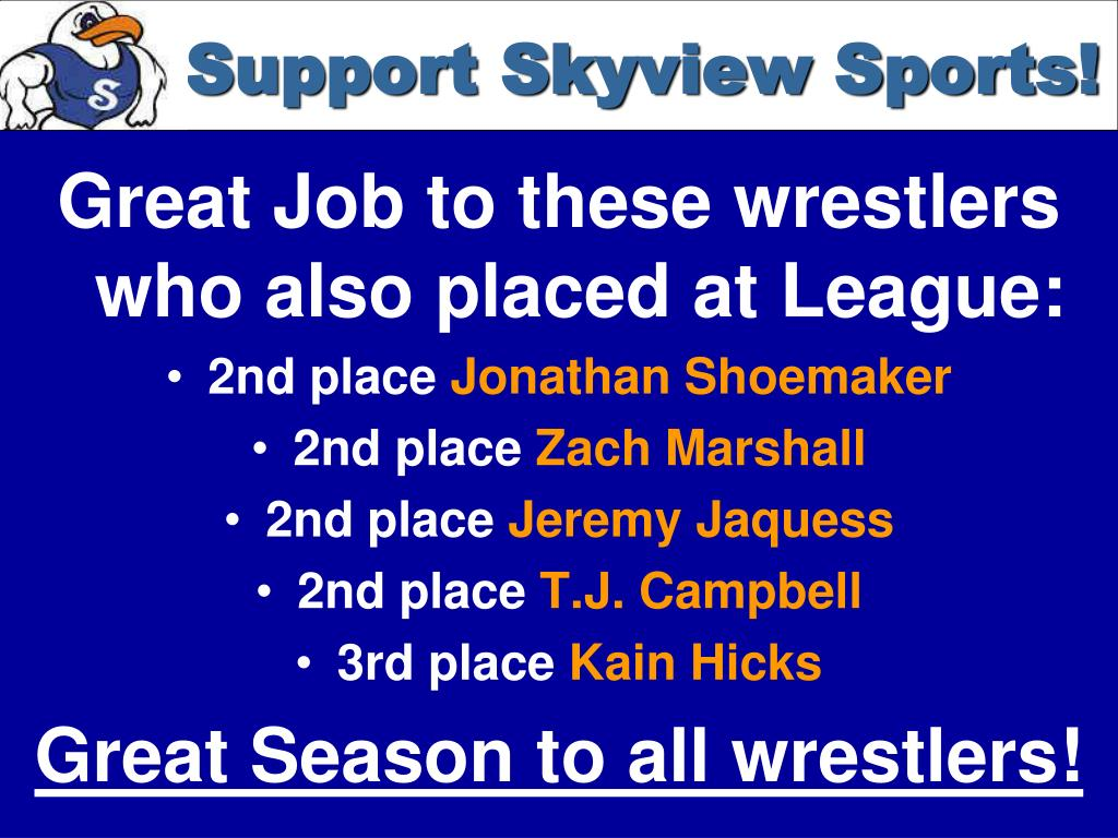 Support Skyview Sports!