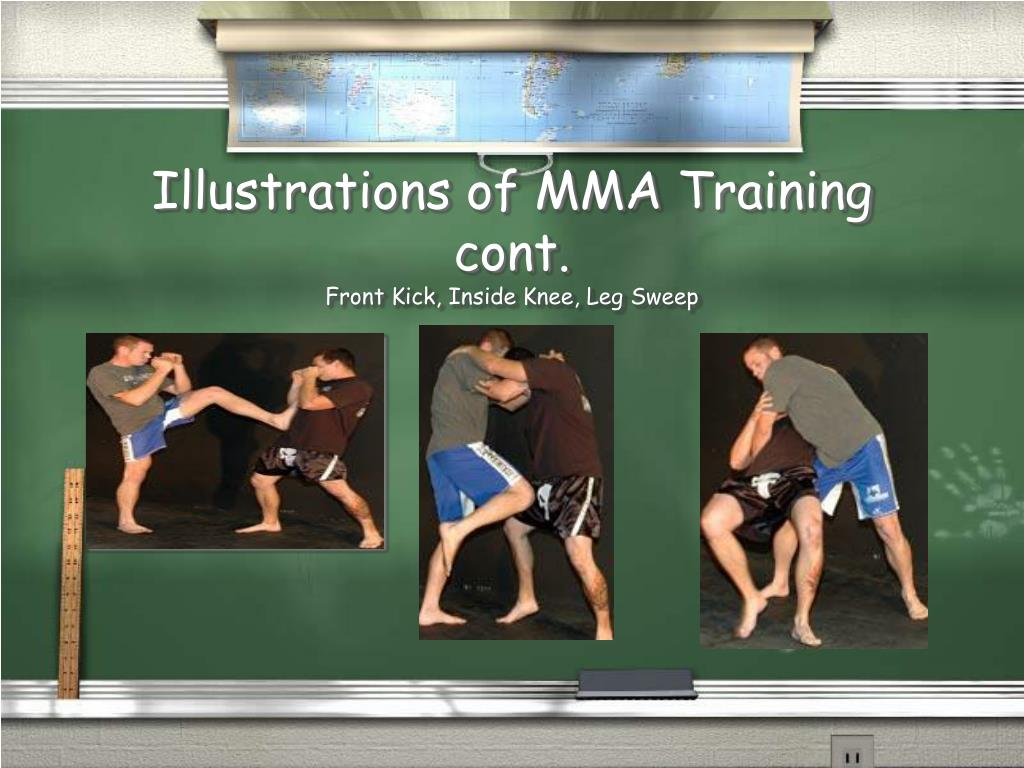 Illustrations of MMA Training cont.
