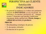 perspectiva del cliente satisfacci n indicadores