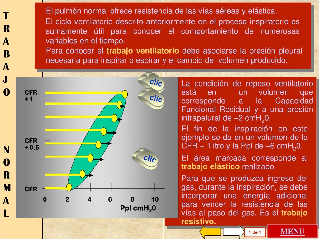 CFR + 1
