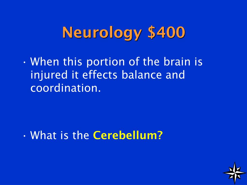 Neurology $400