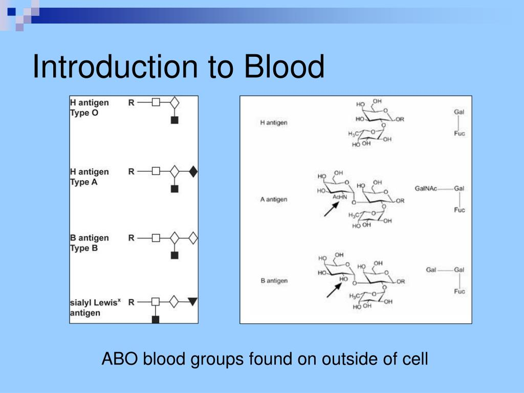 Introduction to Blood