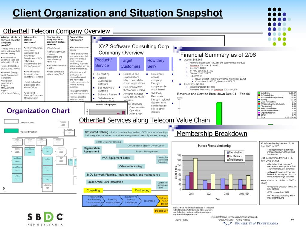 Client Organization and Situation Snapshot