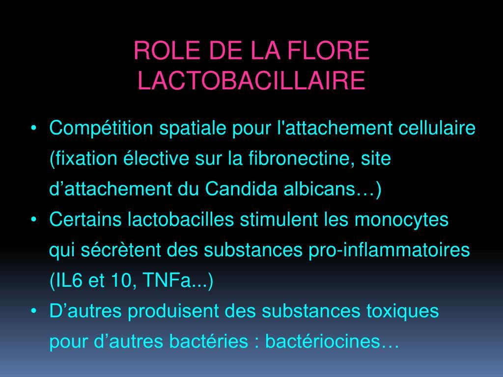 ROLE DE LA FLORE LACTOBACILLAIRE