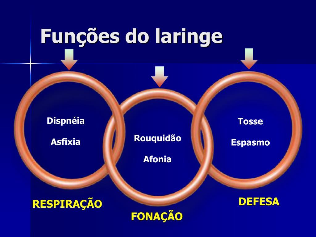 Funções do laringe