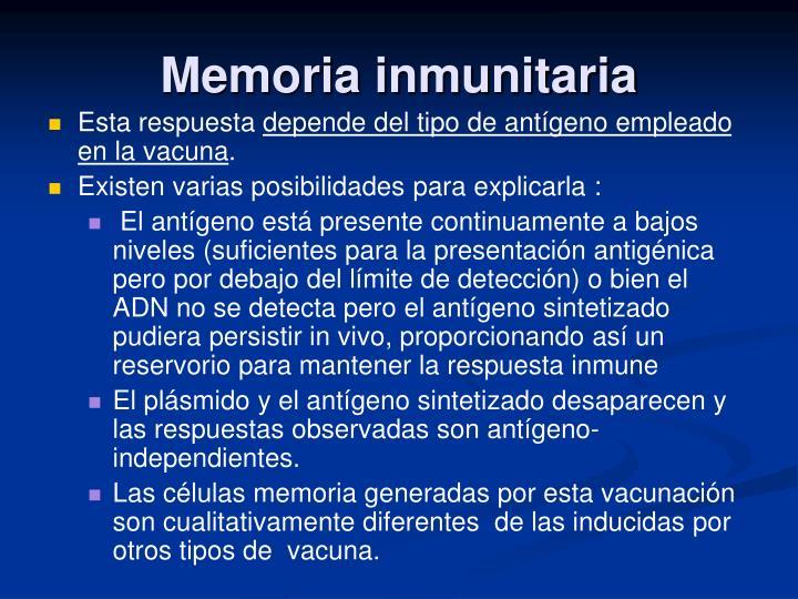 Memoria inmunitaria
