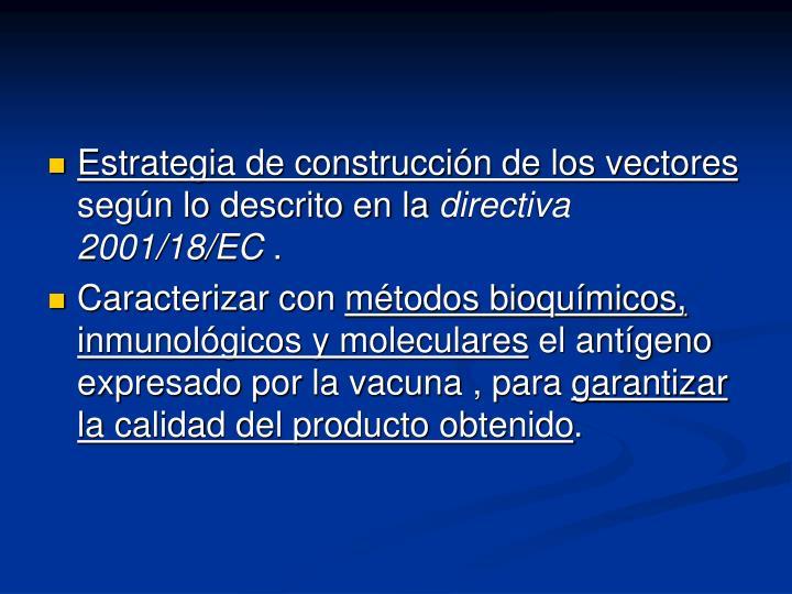 Estrategia de construcción de los vectores