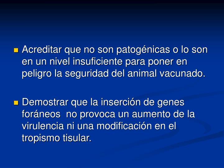 Acreditar que no son patogénicas o lo son en un nivel insuficiente para poner en peligro la seguridad del animal vacunado.